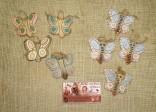 Motýl okatý